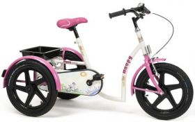 Tricycle for children with special needs Vermeiren HAPPY