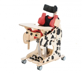 DALMATIAN Manual Multifunctional Positioning Chair