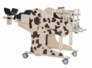 Rehabilitation standing frame with chair function for disabled children DALMATIAN